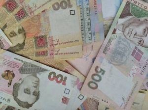 Херсонщина: Единоличники декларируют мизерные доходы