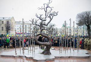 Вінниця: Студенти зберуться  біля «Дерева Свободи»