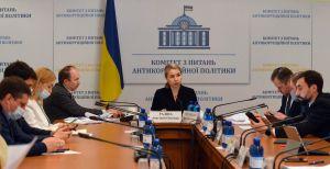 Анастасія Радіна під час засідання
