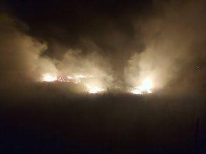 На Полтавщині палає очерет...