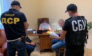 Закарпатье: Закупили некачественные средства защиты почти на 30 млн грн