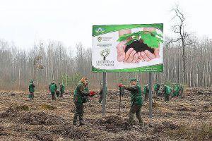 Житомирщина: До кампанії долучилися керівники лісгоспів