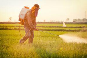 Пестициды убивают не только одомашненных медоносных насекомых
