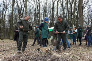 Буковина: Садити дерева вийшли і керівники, і школярі