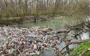 Закарпаття: Сміттєві загати — загроза довкіллю