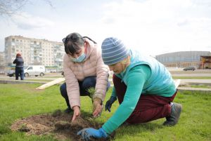 Восстанавливают эколегкие Луганщины