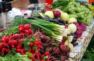 Ранние овощи: цены будут «кусаться»
