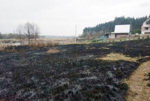 На Житомирщині палійка сухостою мало не знищила ГРС