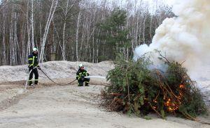 На Полтавщине к тушению леса готовятся заранее