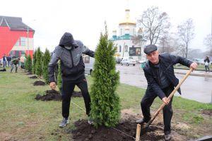 Житомирщина: Объединили громаду общей аллеей