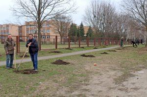 Полтавщина: Аллея в честь героев-чернобыльцев