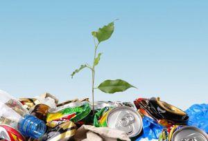 Чим ти можеш допомогти нашій Землі