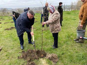 Вінниччина: У селі Мурафа заклали сад на честь захисників