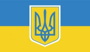Про внесення зміни до статті 22 Закону України «Про загальнообов'язкове державне соціальне страхування» щодо соціального захисту у разі настання тимчасової непрацездатності