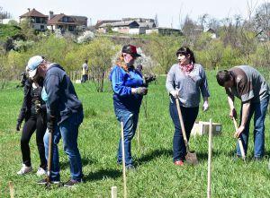 Житомирщина: Вшанували борців з нацизмом еко-акцією