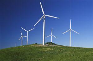 В Гощанской громаде разместят ветряные мельницы