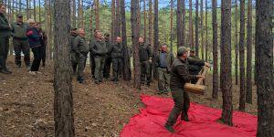 На Черкащине учились лечить лес