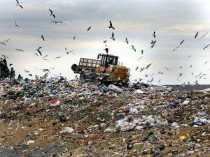 На улицы Херсона выпустят «пожирателей мусора»