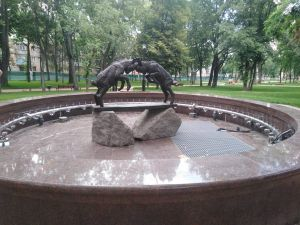 Чернигов: Снова встретились неуступчивые козлики