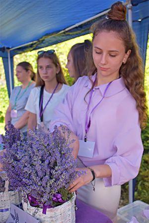Житомирщина: Свято з ароматом лаванди