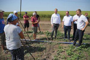 Ривненщина: Органическое растениеводство на пользу рациональному питанию