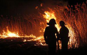 Застерігають від пожеж на ланах