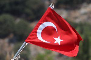 Турция: Артефакты обнаружили в каталогах иностранных аукционных домов