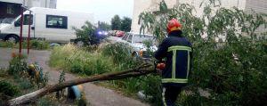 Хмельниччина: Щоб електромережі не страждали від буревіїв