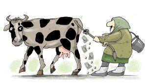 Зреет молочная революция