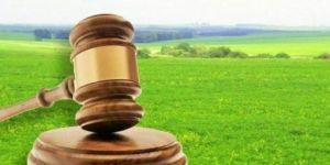 Миколаївщина: Земельні торги наповнюють бюджети