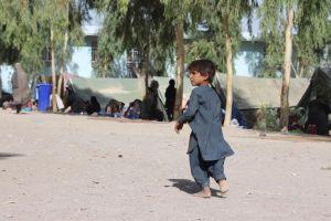 ООН предупреждает о надвигающейся гуманитарной катастрофе в Афганистане