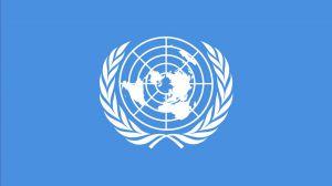 Генеральный секретарь ООН обнародовал доклад о нарушении прав человека в Крыму