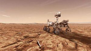 Это счастье видеть дырку в камне, если камень на Марсе