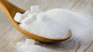 Зварили перший цукор