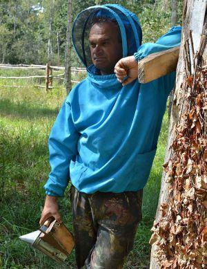 Поліське бортництво: як добувати солодкий продукт прямо з дерев