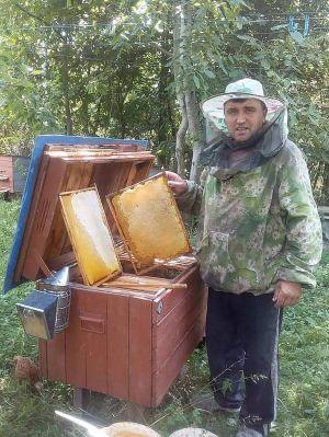 Шануєш бджіл — матимеш мед