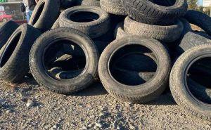 Буковина: Шины как последний аргумент