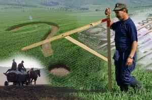 Як діє ринок землі на сході країни?