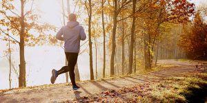 А бігати краще в парках
