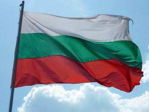 Болгарія: Обери мене, обери мене й отримаєш щасливу посмішку