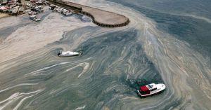 «Мы уже начали его терять», — заявил ученый о судьбе Мраморного моря