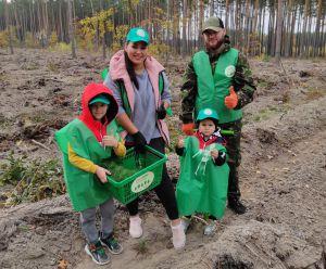 Житомирщина: За день — мільйон дерев
