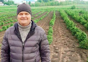 Виктор Копыщик выращивает экологически чистую малину