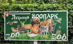 У Луцькому зоопарку потерпіли мавпи