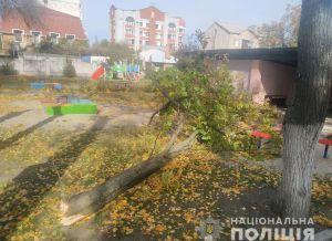 Смертельна прогулянка: у дитсадку на малечу впало дерево