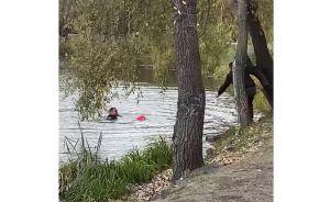 Ивано-Франковщина: Полицейские достали из озера ребенка
