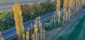 Миколаївщина: До морського узбережжя — комфортним шляхом