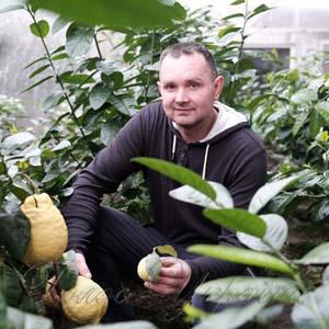 Тропічні рослини оселилися на Буковині