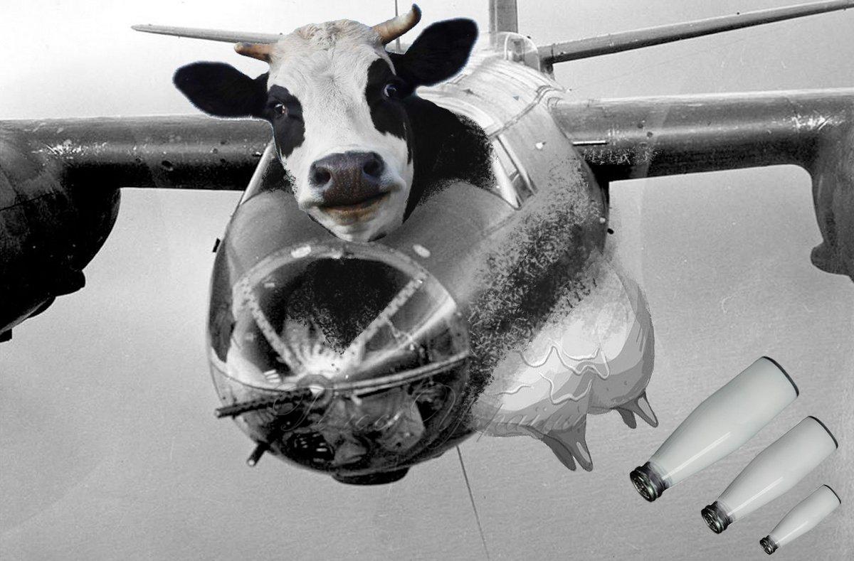 Импортное молоко атакует