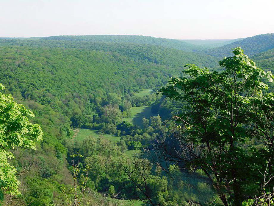 Природный заповедник «Медоборы» - жемчужина Тернопольщины